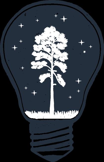 Ampoule Semoir